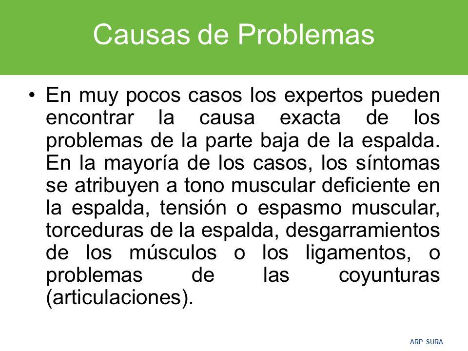 ARP SURA Causas de Problemas En muy pocos casos los expertos pueden encontrar la causa exacta de los problemas de la parte baja de la espalda.