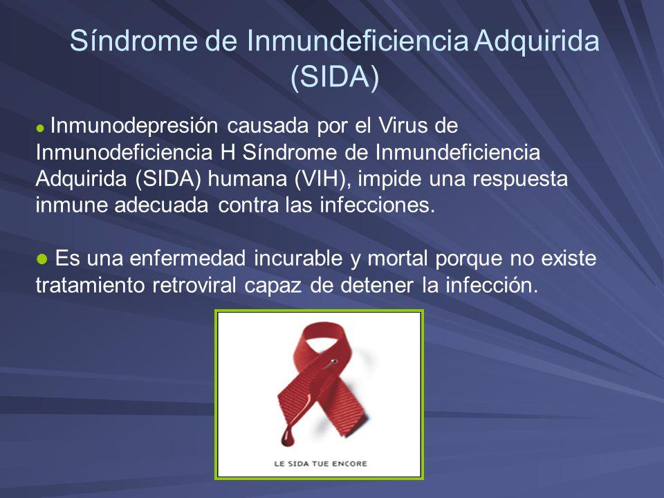Síndrome de Inmundeficiencia Adquirida (SIDA) Inmunodepresión causada por el Virus de Inmunodeficiencia H Síndrome de Inmundeficiencia Adquirida (SIDA