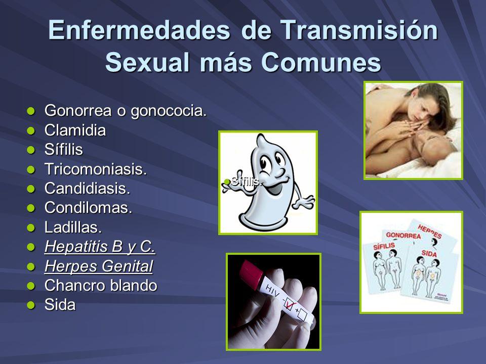 Enfermedades de Transmisión Sexual más Comunes Gonorrea o gonococia. Gonorrea o gonococia. Clamidia Clamidia Sífilis Sífilis Tricomoniasis. Tricomonia