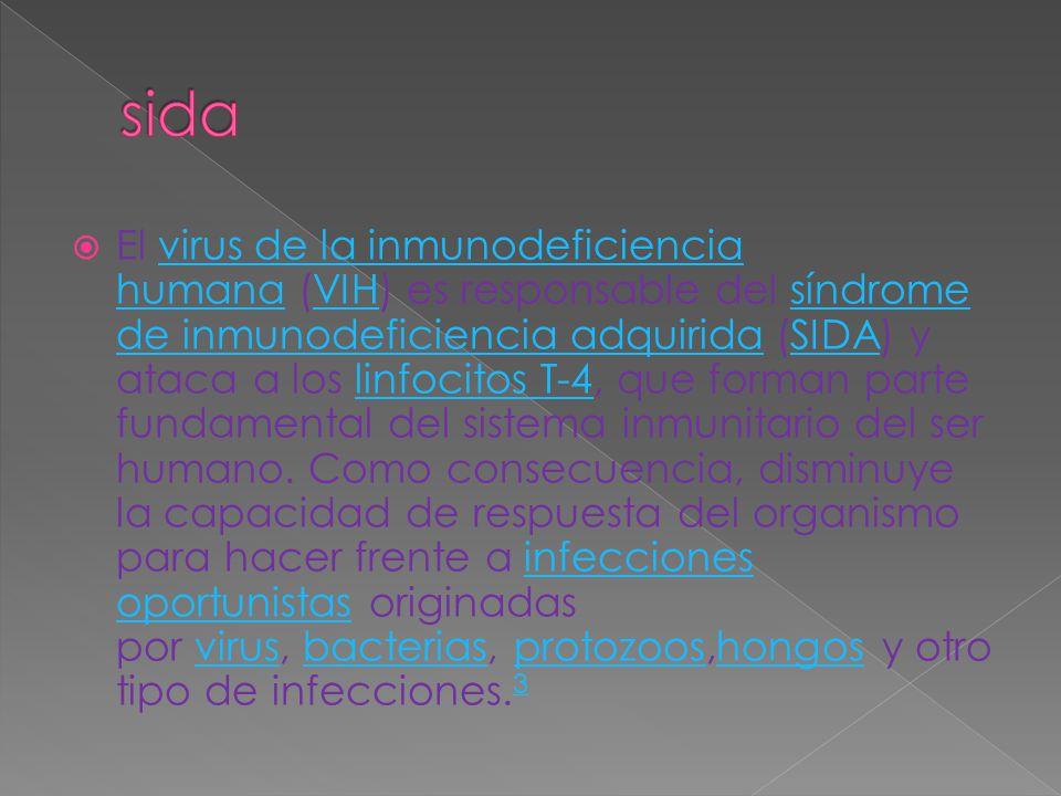  El virus de la inmunodeficiencia humana (VIH) es responsable del síndrome de inmunodeficiencia adquirida (SIDA) y ataca a los linfocitos T-4, que fo