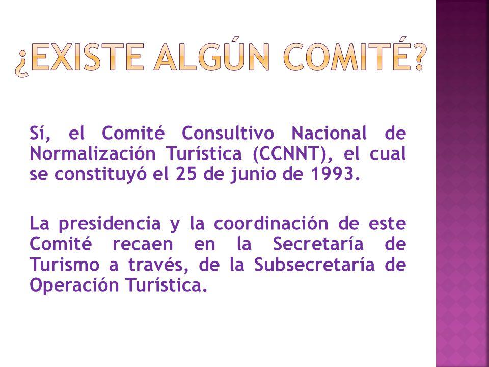 Sí, el Comité Consultivo Nacional de Normalización Turística (CCNNT), el cual se constituyó el 25 de junio de 1993.