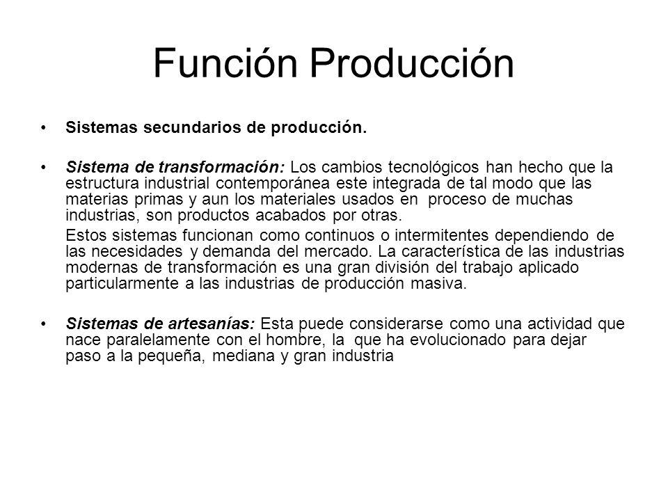 Función Producción Sistemas secundarios de producción.