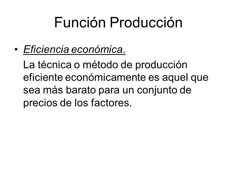 Función Producción Costos: –Costos directos: materiales, mano de obra.