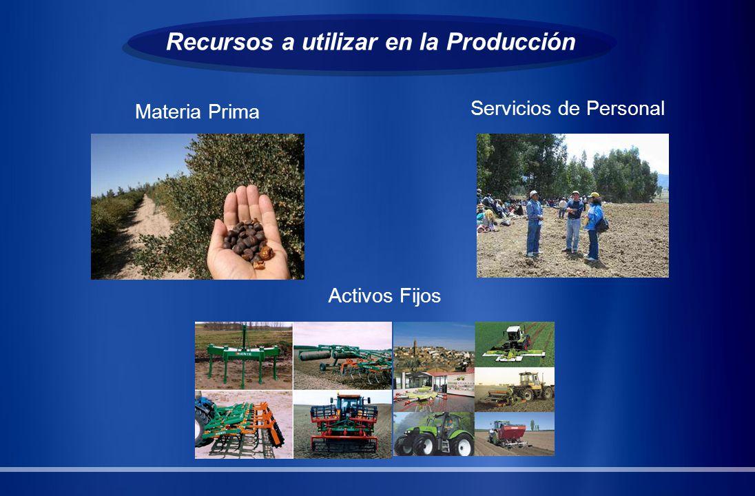 Recursos a utilizar en la Producción Materia Prima Servicios de Personal Activos Fijos