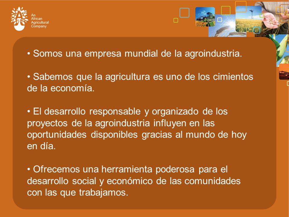 Somos una empresa mundial de la agroindustria.