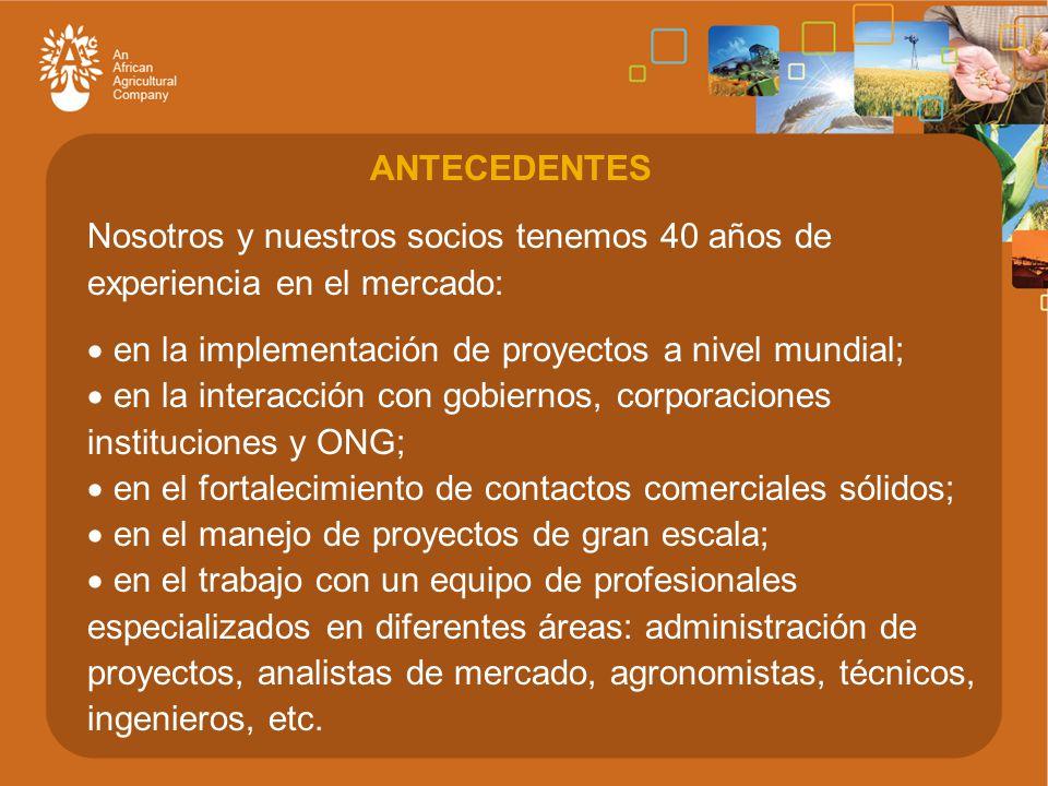 ANTECEDENTES Nosotros y nuestros socios tenemos 40 años de experiencia en el mercado:  en la implementación de proyectos a nivel mundial;  en la interacción con gobiernos, corporaciones instituciones y ONG;  en el fortalecimiento de contactos comerciales sólidos;  en el manejo de proyectos de gran escala;  en el trabajo con un equipo de profesionales especializados en diferentes áreas: administración de proyectos, analistas de mercado, agronomistas, técnicos, ingenieros, etc.