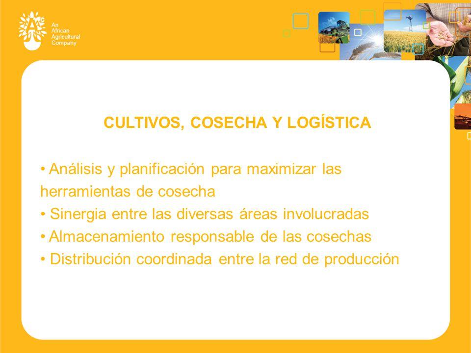 CULTIVOS, COSECHA Y LOGÍSTICA Análisis y planificación para maximizar las herramientas de cosecha Sinergia entre las diversas áreas involucradas Almacenamiento responsable de las cosechas Distribución coordinada entre la red de producción