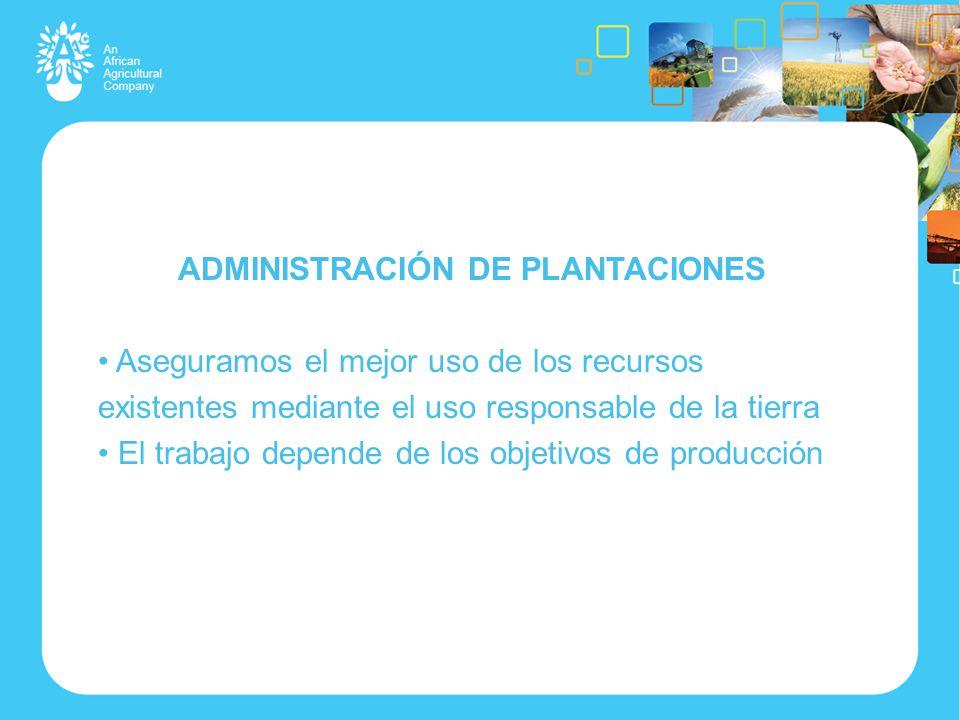 ADMINISTRACIÓN DE PLANTACIONES Aseguramos el mejor uso de los recursos existentes mediante el uso responsable de la tierra El trabajo depende de los objetivos de producción