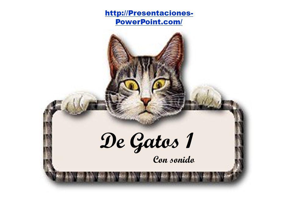 PRUEBAS DE QUE LA RAZA HUMANA SE DIRIGE INEXORABLEMENTE HACIA LA ESTUPIDEZ De Gatos 1 Con sonido http://Presentaciones- PowerPoint.com/