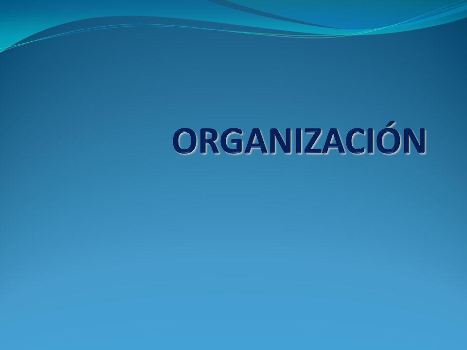 Organización Una vez que se ha establecido lo que se quiere hacer , es decir, los objetivos por alcanzar durante la etapa de planeación, será necesario determinar cómo hacerlo , qué medidas utilizar para lograr lo que se desea; esto sólo es posible a través de la organización
