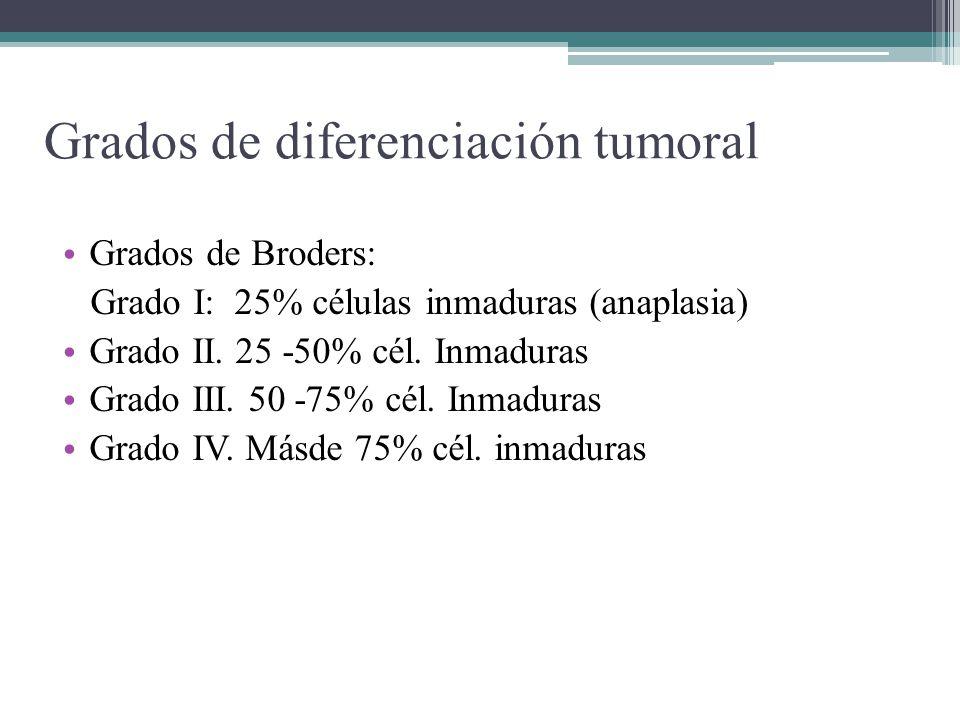 Grados de diferenciación tumoral Grados de Broders: Grado I: 25% células inmaduras (anaplasia) Grado II. 25 -50% cél. Inmaduras Grado III. 50 -75% cél