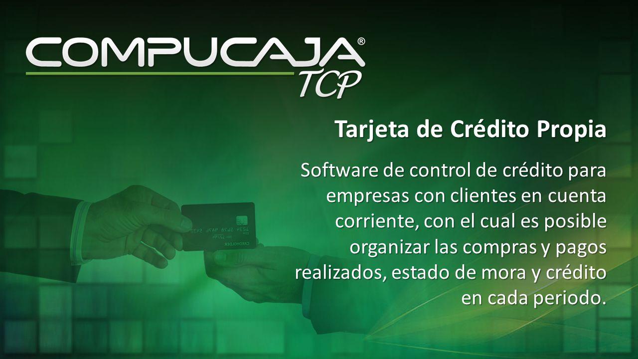 Software de control de crédito para empresas con clientes en cuenta corriente, con el cual es posible organizar las compras y pagos realizados, estado