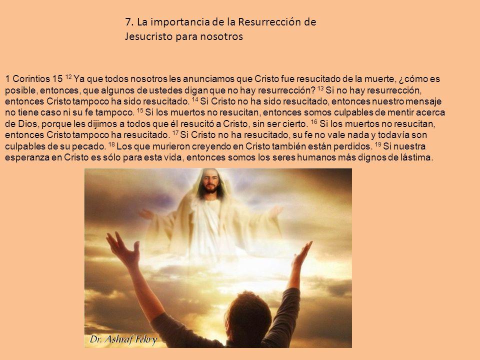 wwww sevilla org: