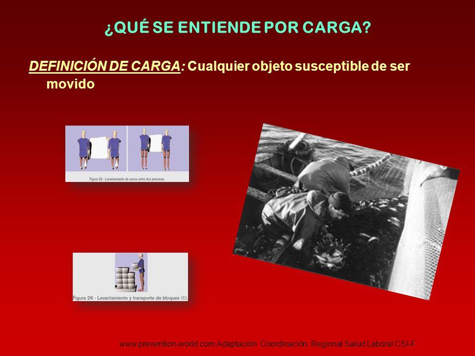 TÉCNICA DE LEVANTAMIENTO DE CARGAS Mover y colocar bloque y ladrillos  Levantar los bloques con los pies y el cuerpo en la misma dirección.