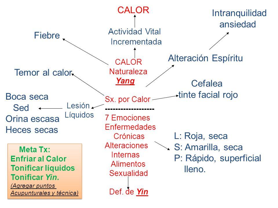 CALOR Naturaleza Yang Sx.