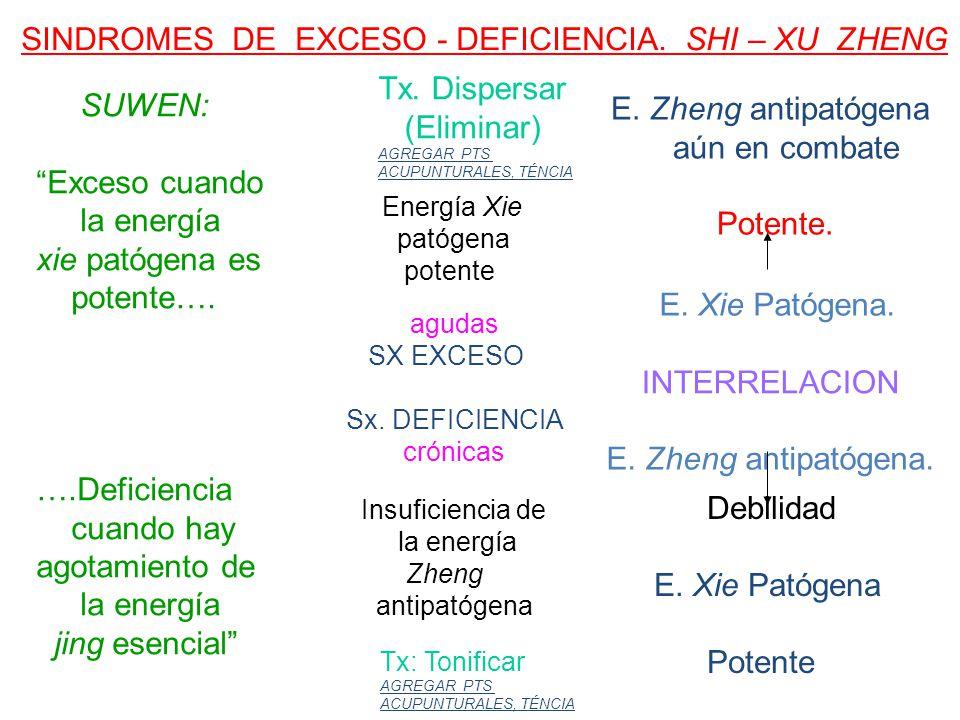 SINDROMES DE EXCESO - DEFICIENCIA.SHI – XU ZHENG agudas SX EXCESO Sx.