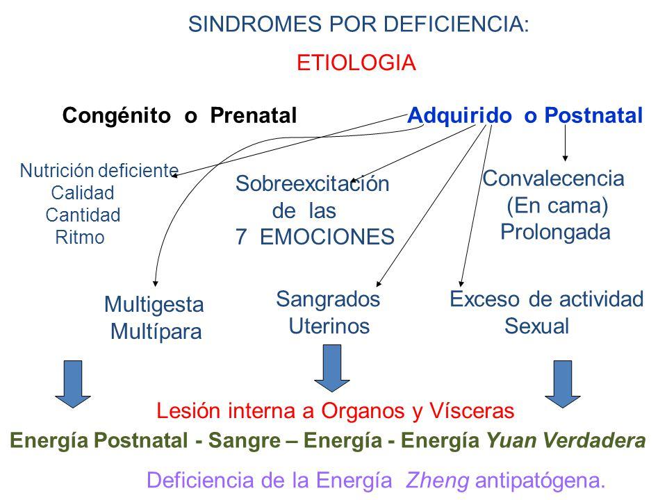 SINDROMES POR DEFICIENCIA: ETIOLOGIA Congénito o Prenatal Adquirido o Postnatal Nutrición deficiente Calidad Cantidad Ritmo Sobreexcitación de las 7 EMOCIONES Convalecencia (En cama) Prolongada Multigesta Multípara Sangrados Uterinos Exceso de actividad Sexual Lesión interna a Organos y Vísceras Energía Postnatal - Sangre – Energía - Energía Yuan Verdadera Deficiencia de la Energía Zheng antipatógena.