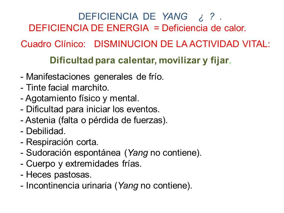 DEFICIENCIA DE YANG ¿ ?.DEFICIENCIA DE ENERGIA = Deficiencia de calor.