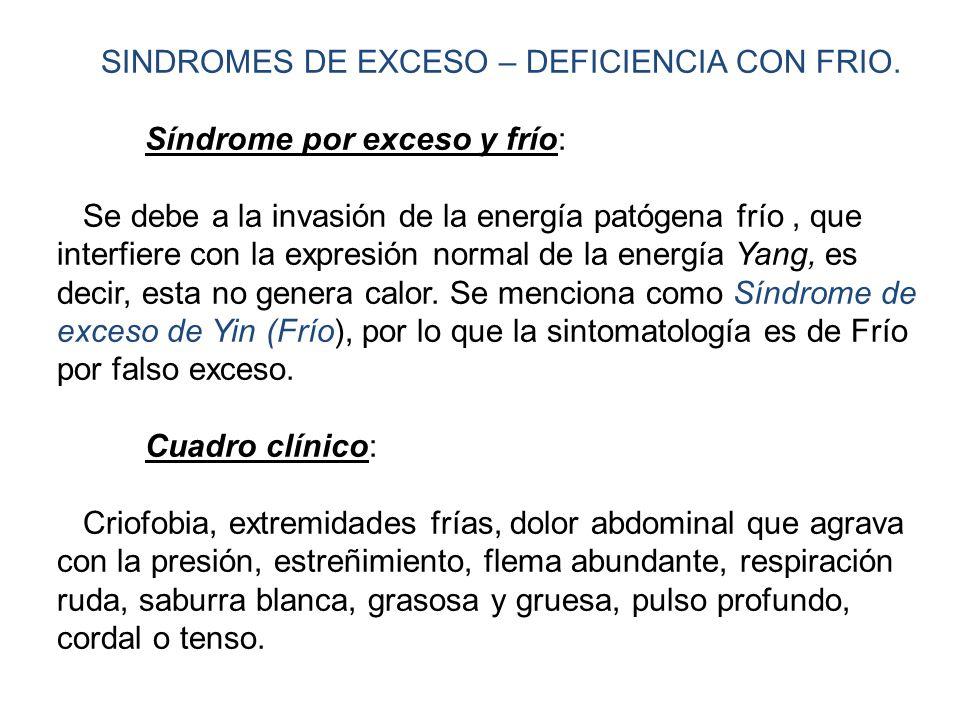 SINDROMES DE EXCESO – DEFICIENCIA CON FRIO.