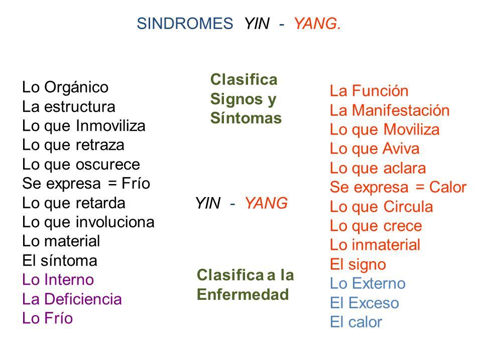 SINDROMES YIN - YANG.