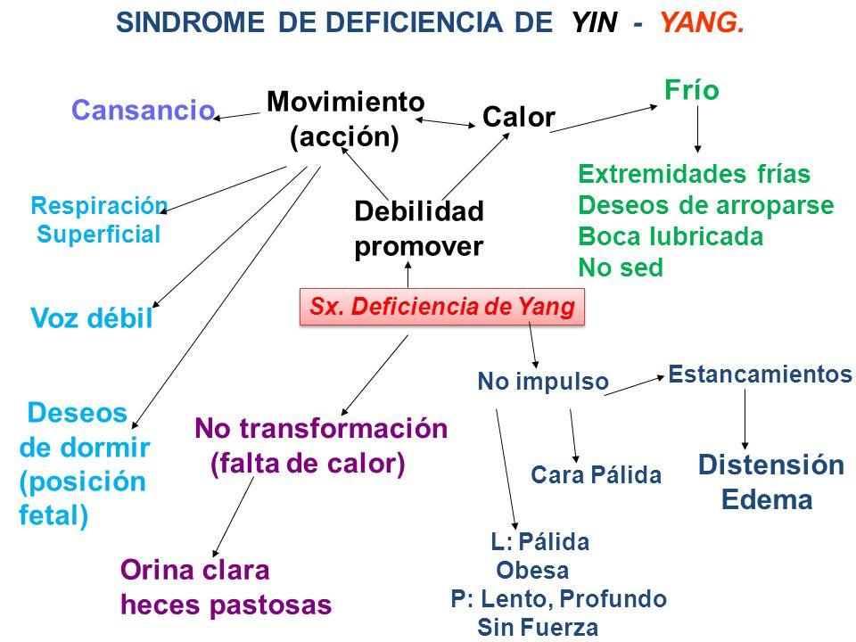 SINDROME DE DEFICIENCIA DE YIN - YANG.Sx.