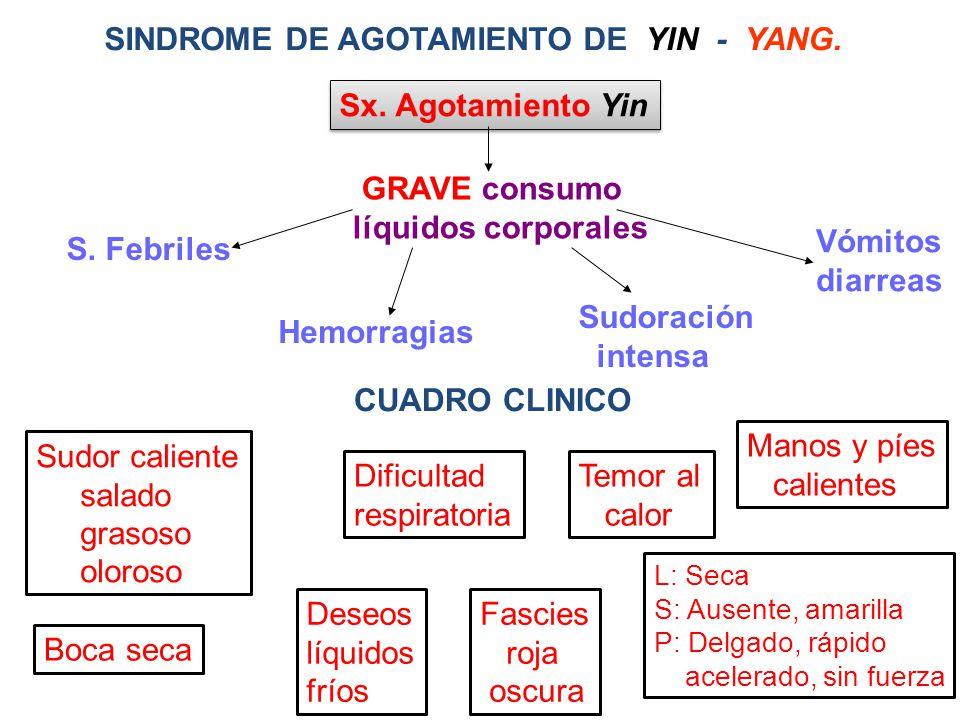 SINDROME DE AGOTAMIENTO DE YIN - YANG.Sx. Agotamiento Yin GRAVE consumo líquidos corporales S.