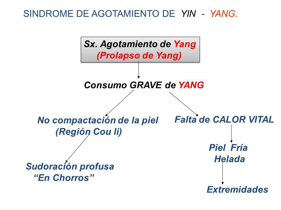 SINDROME DE AGOTAMIENTO DE YIN - YANG.Sx. Agotamiento de Yang (Prolapso de Yang) Sx.