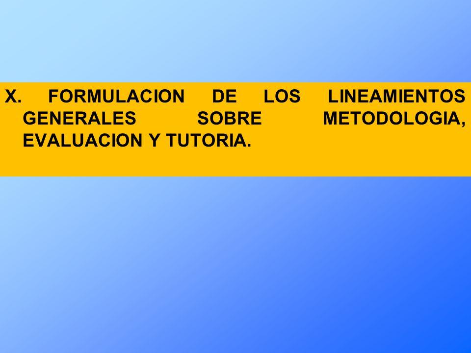 X. FORMULACION DE LOS LINEAMIENTOS GENERALES SOBRE METODOLOGIA, EVALUACION Y TUTORIA.