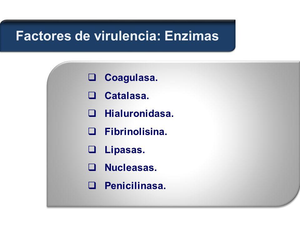  Coagulasa. Catalasa.  Hialuronidasa.  Fibrinolisina.