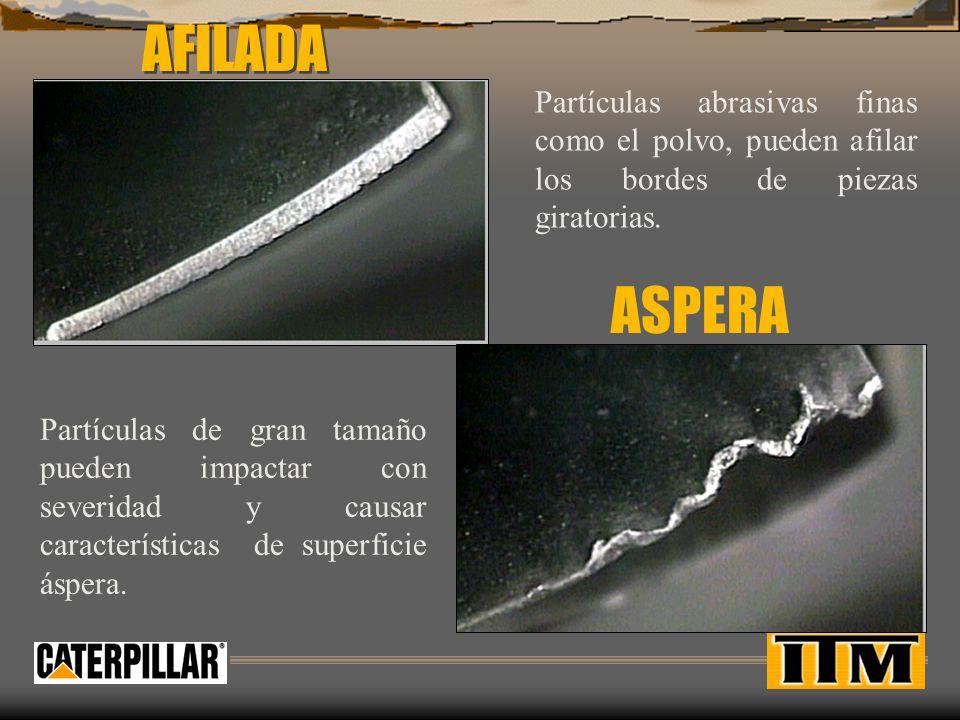 AFILADA Partículas abrasivas finas como el polvo, pueden afilar los bordes de piezas giratorias.