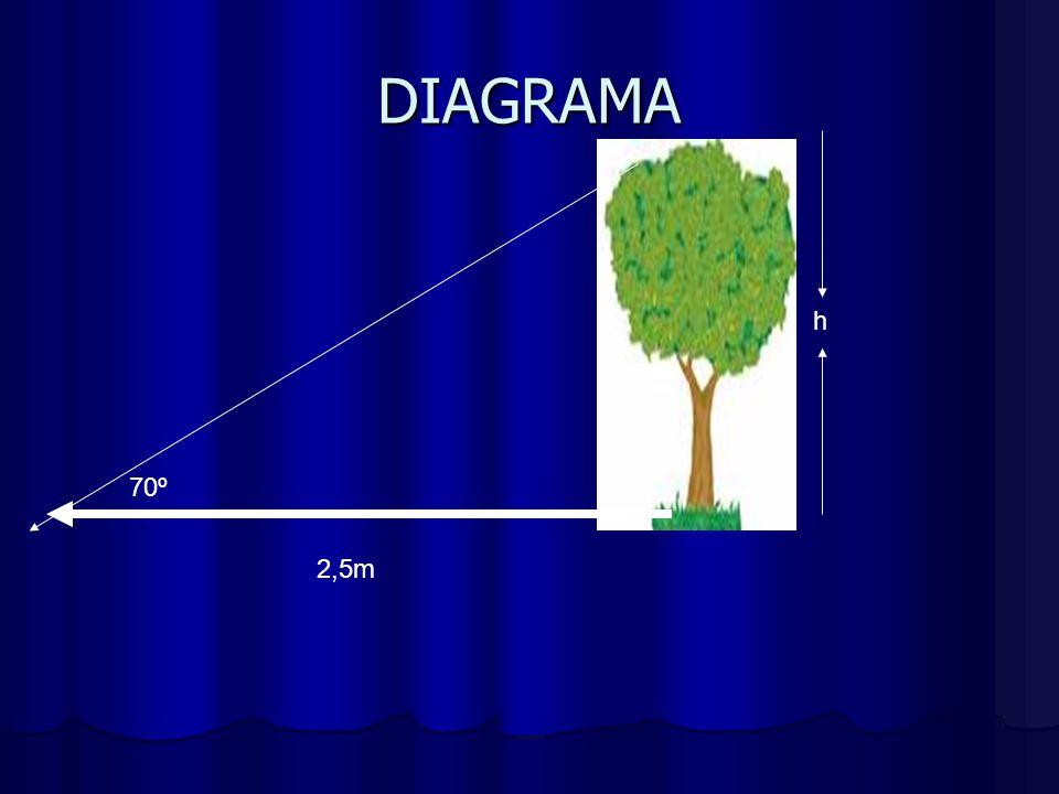 SOLUCION DEL PROBLEMA h = Altura del árbol h = Altura del árbol Tg = cateto opuesto Tg = cateto opuesto cateto adyacen cateto adyacen Tg 70º = h 2.5 2.5 h = 2.5 * tg 70º h = 2.5 * 1.96 h =4.9 La altura del árbol es 4.9m