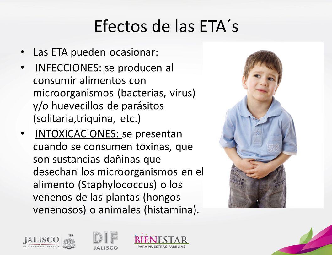 Efectos de las ETA´s Las ETA pueden ocasionar: INFECCIONES: se producen al consumir alimentos con microorganismos (bacterias, virus) y/o huevecillos de parásitos (solitaria,triquina, etc.) INTOXICACIONES: se presentan cuando se consumen toxinas, que son sustancias dañinas que desechan los microorganismos en el alimento (Staphylococcus) o los venenos de las plantas (hongos venenosos) o animales (histamina).