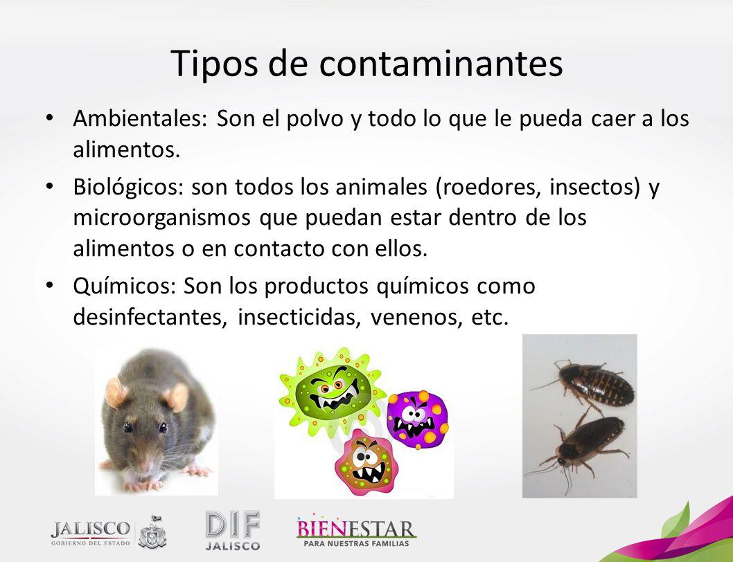 Tipos de contaminantes Ambientales: Son el polvo y todo lo que le pueda caer a los alimentos.