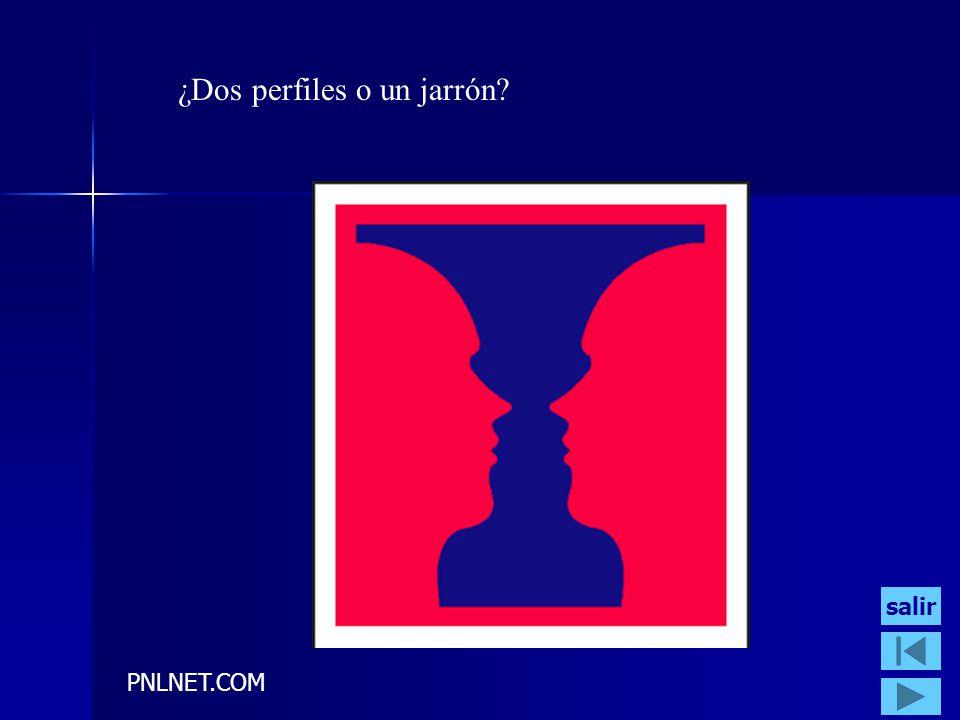 PNLNET.COM ¿Dos perfiles o un jarrón? salir