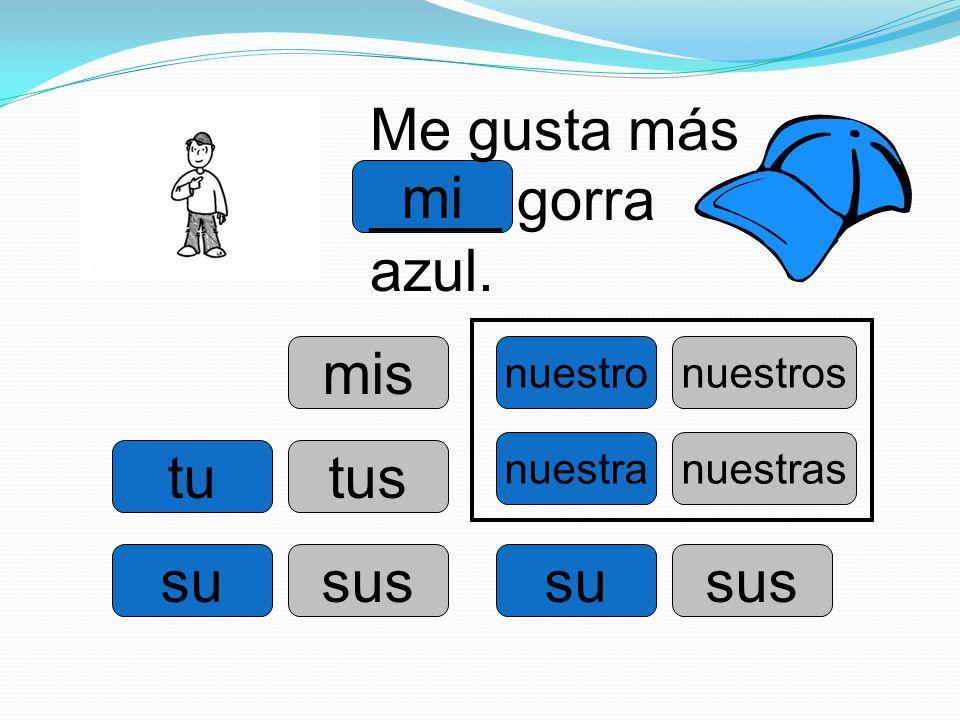 mi tu su nuestro su nuestra Me gusta más ____ gorra azul. mis tus sus nuestros sus nuestras