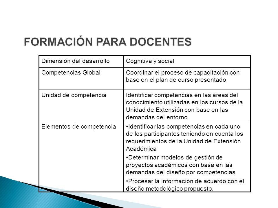 Identificar las competencias en cada uno de los participantes teniendo en cuenta los requerimientos de la Unidad de Extensión Académica Determinar modelos de gestión de proyectos académicos con base en las demandas del diseño por competencias Procesar la información de acuerdo con el diseño metodológico propuesto.