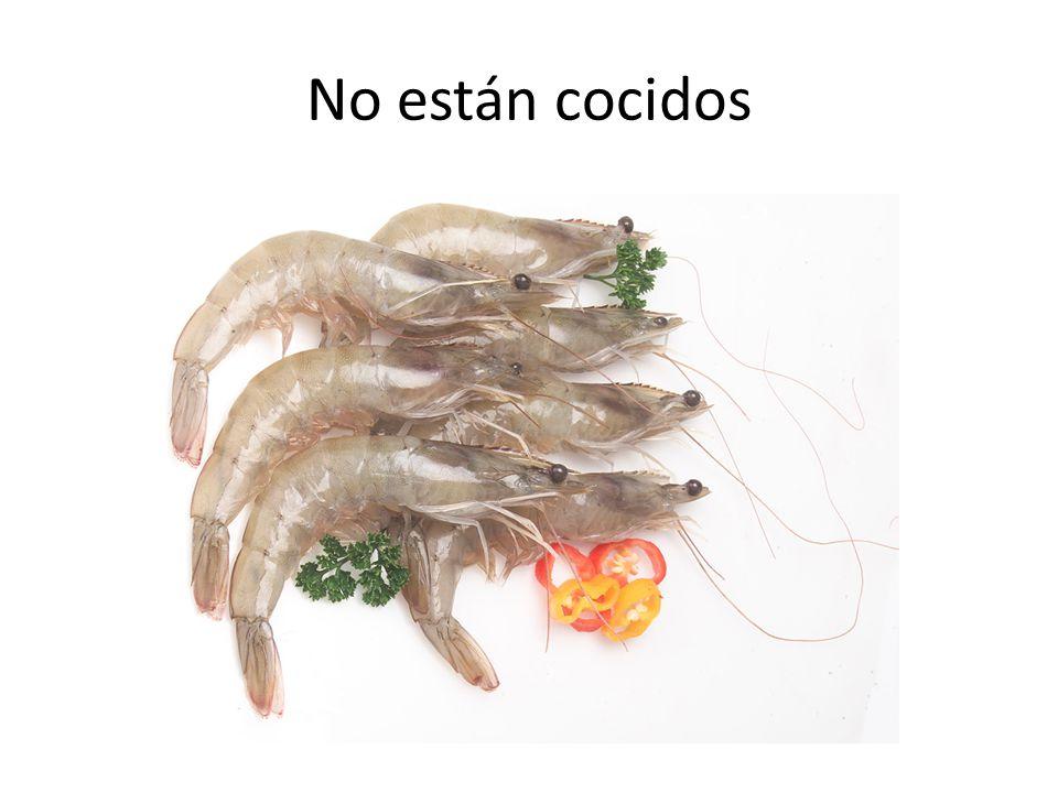 No están cocidos