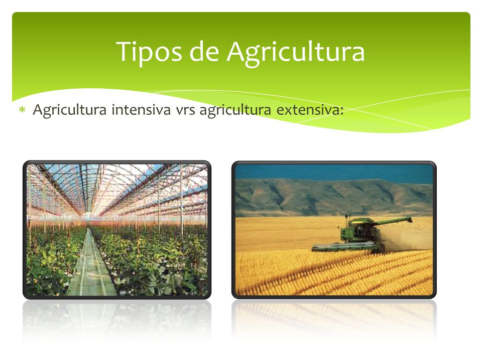  Agricultura intensiva vrs agricultura extensiva: Tipos de Agricultura