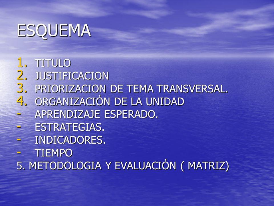 ESQUEMA 1. TITULO 2. JUSTIFICACION 3. PRIORIZACION DE TEMA TRANSVERSAL.