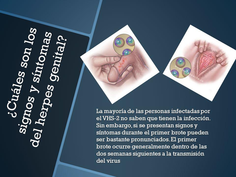 ¿Cuáles son los signos y síntomas del herpes genital.