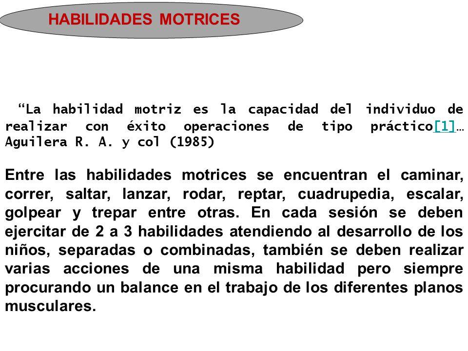 """HABILIDADES MOTRICES """"La habilidad motriz es la capacidad del individuo de realizar con éxito operaciones de tipo práctico[1]… Aguilera R. A. y col (1"""