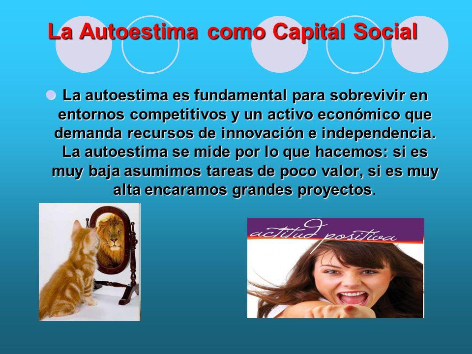 La Autoestima como Capital Social La autoestima es fundamental para sobrevivir en entornos competitivos y un activo económico que demanda recursos de innovación e independencia.