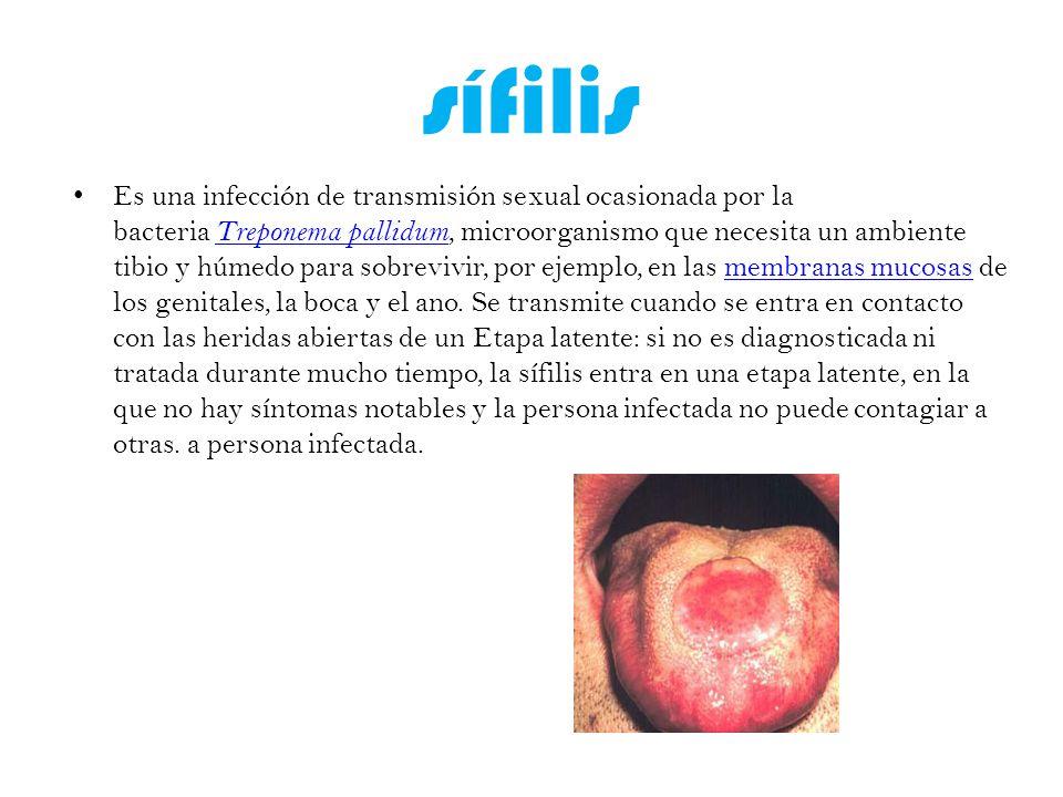 sífilis Es una infección de transmisión sexual ocasionada por la bacteria Treponema pallidum, microorganismo que necesita un ambiente tibio y húmedo para sobrevivir, por ejemplo, en las membranas mucosas de los genitales, la boca y el ano.