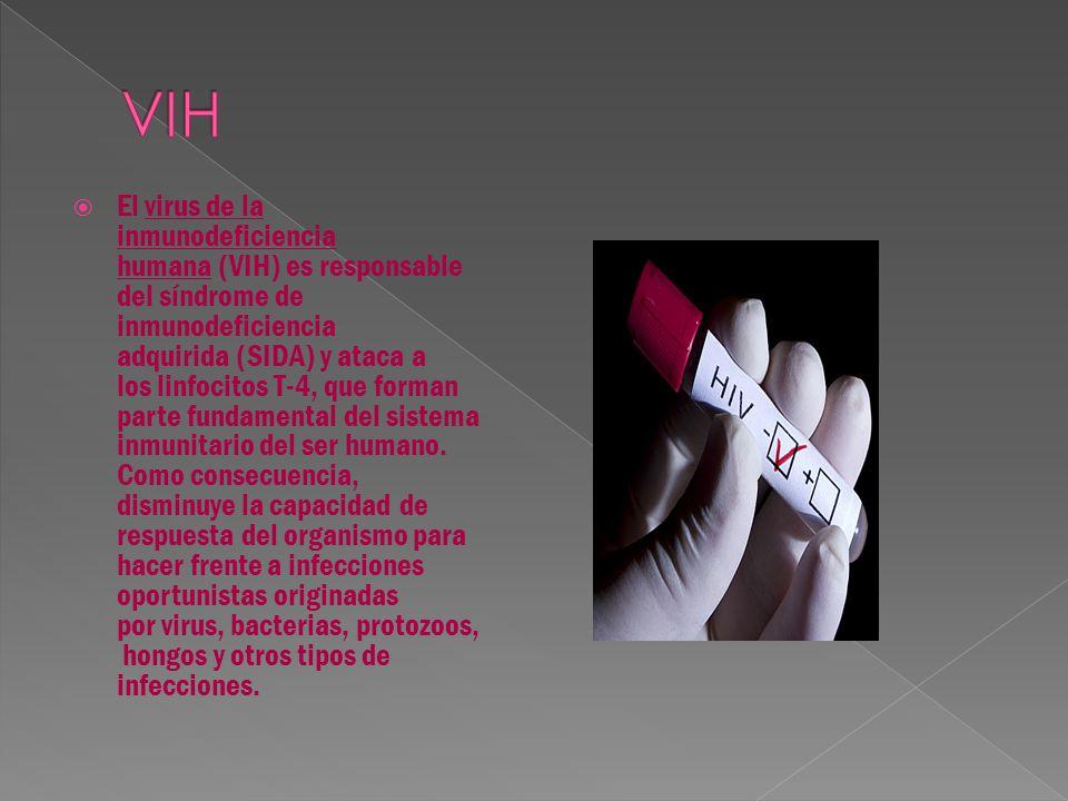  Es la enfermedad bacteriológica más común.Se transmite a través del sexo vaginal, anal y oral.