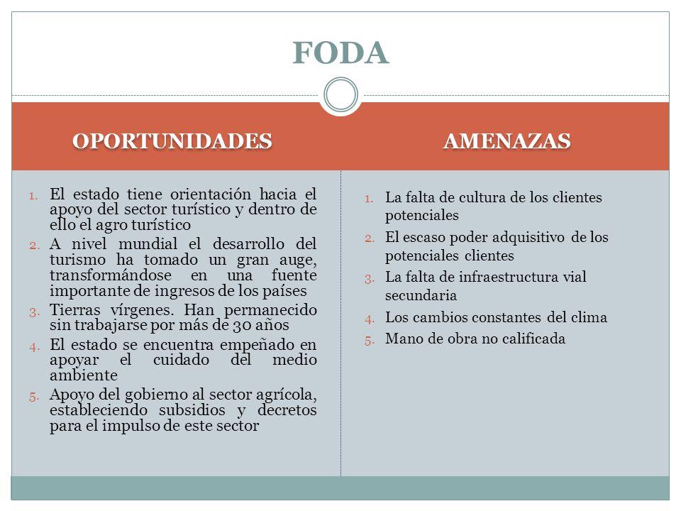 OPORTUNIDADES AMENAZAS 1.