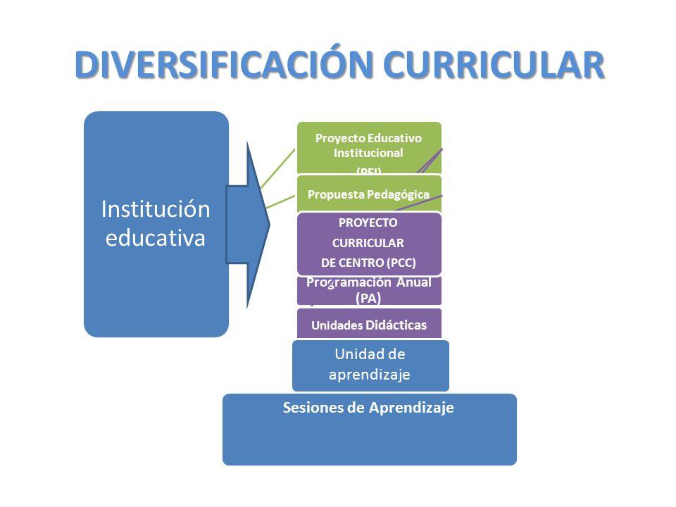 DIVERSIFICACIÓN CURRICULAR Institución educativa Proyecto Educativo Institucional (PEI) Programación Anual (PA) Unidades Didácticas Propuesta Pedagógi