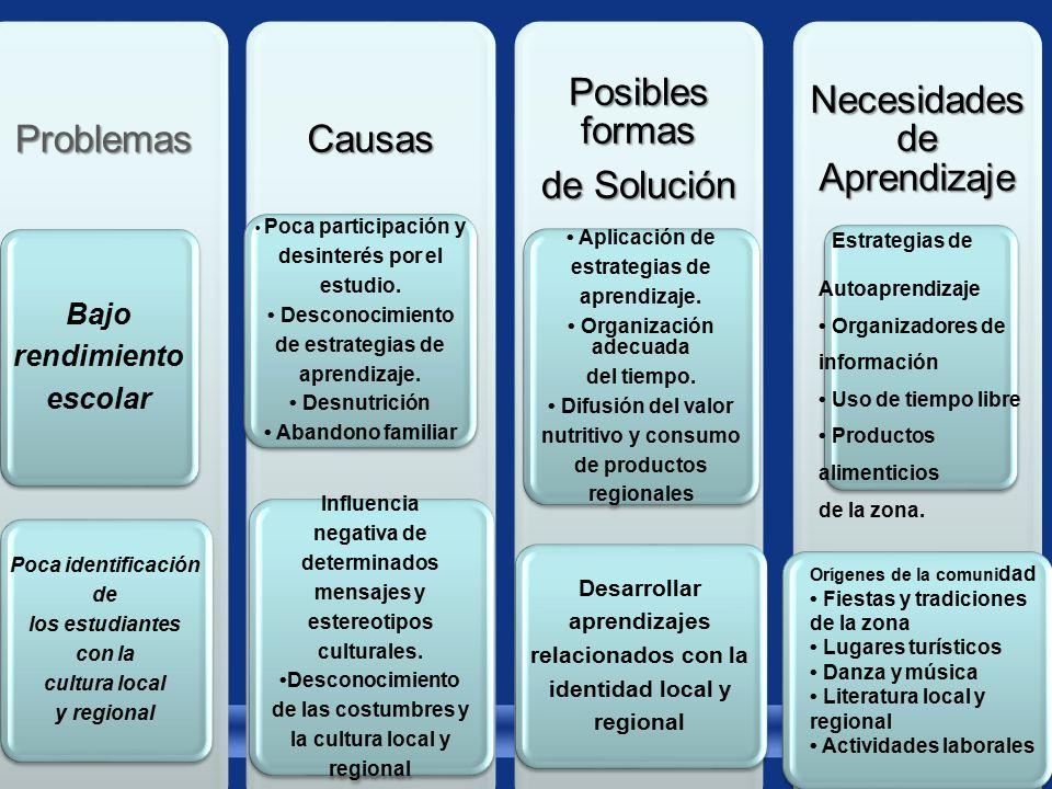 Problemas Bajo rendimiento escolar Poca identificación de los estudiantes con la cultura local y regionalCausas Poca participación y desinterés por el