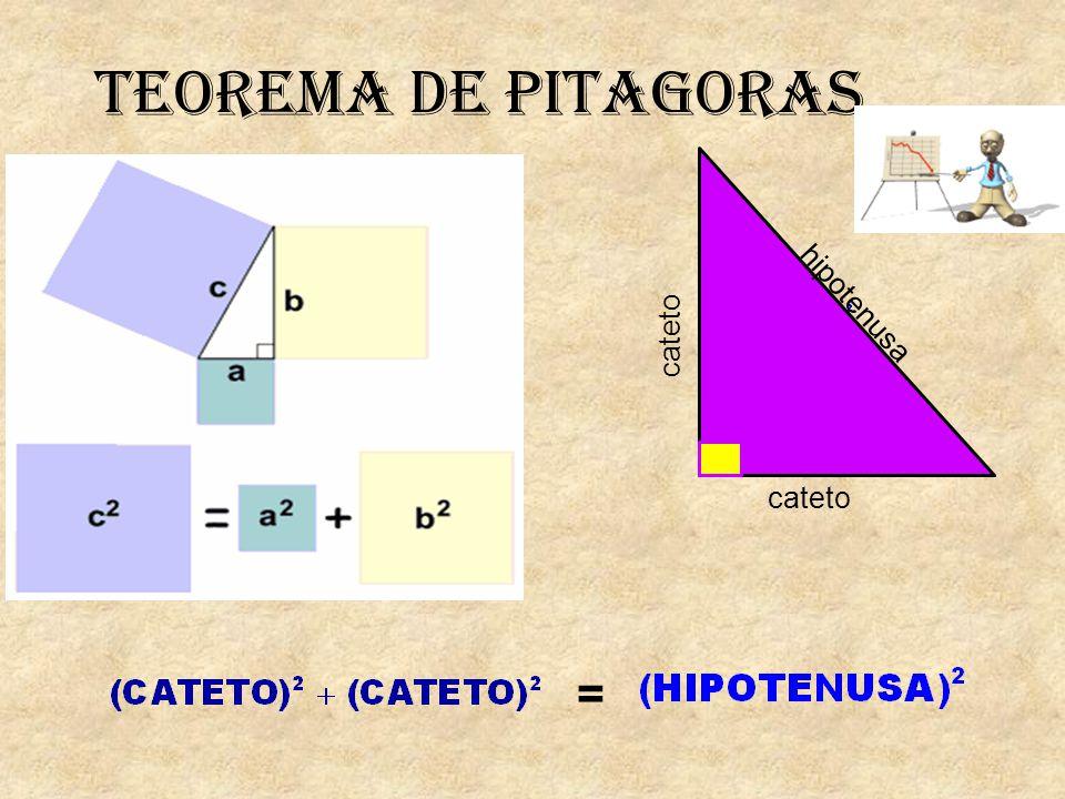 TEOREMA DE PITAGORAS = cateto hipotenusa