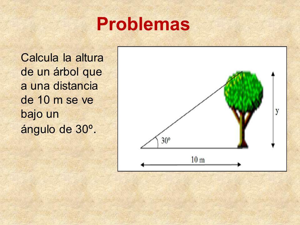 Calcula la altura de un árbol que a una distancia de 10 m se ve bajo un ángulo de 30º. Problemas
