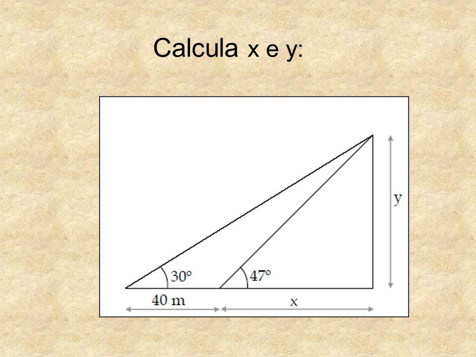 Calcula x e y: